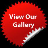 Gallery Thumb